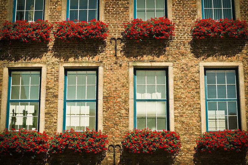 Sprossenfenster kunststoff  Sprossenfenster mit Sprossen aus Holz, Kunststoff oder Metall